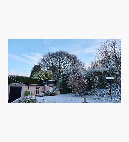 Our Garden This Morning Photographic Print