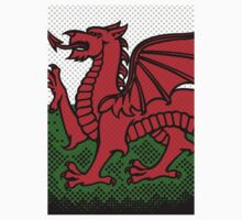 Welsh Dragon Kids Clothes