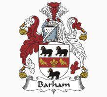 Coat of arms (family crest) for last-name or surname Barham . Heraldry banner for your name. by rita24