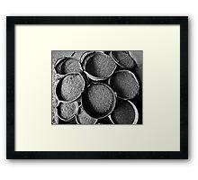 Full Grain Framed Print