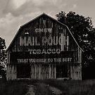 Mail Pouch by © Jolie  Buchanan