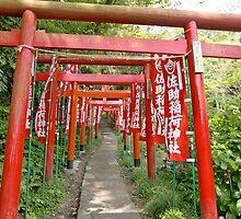 Gated community by miwa333