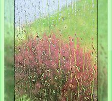 Rain, Rain, Go Away by Monnie Ryan
