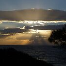 Cloudy Sun Rays by Vicki Spindler (VHS Photography)