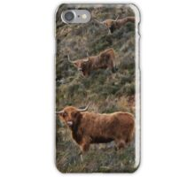 Tom Dick and Harry iPhone Case/Skin