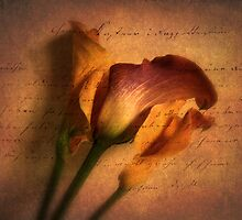 Callas by Candlelight by Jessica Jenney