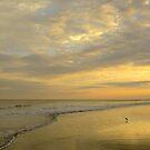 Quiet Sunset by Ree  Reid