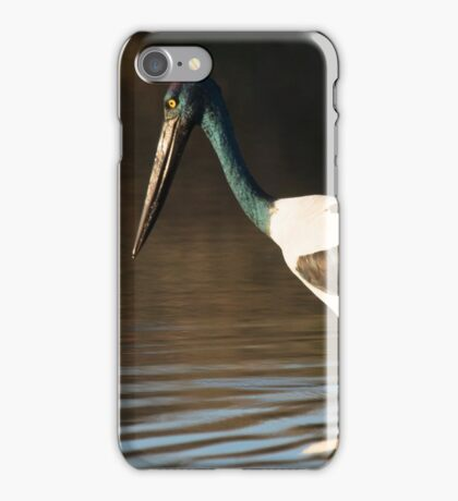 The Pond Walk iPhone Case/Skin