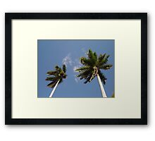 Palm trees in the wind Framed Print