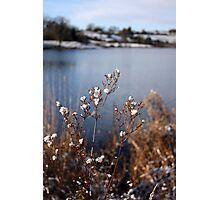 Sun & Snow Photographic Print