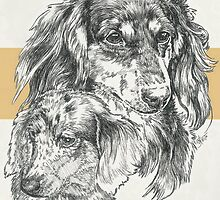 Dachshund, Long-haired, Father & Son by BarbBarcikKeith