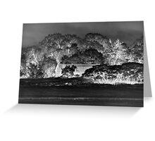 Glowing - Barn in the Trees Greeting Card