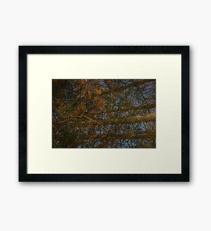 Hidden Depth Framed Print