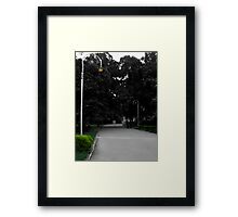 Lawrence Garden Framed Print