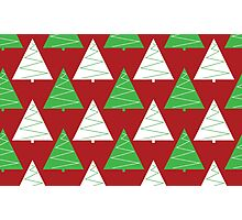 Red & Green Christmas Trees Photographic Print