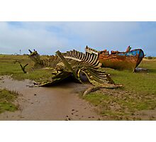 Ribs and Rust Photographic Print