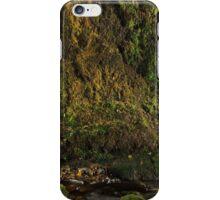 Nightland # 11 iPhone Case/Skin
