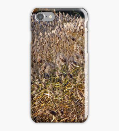 Reeds & Grasses iPhone Case/Skin