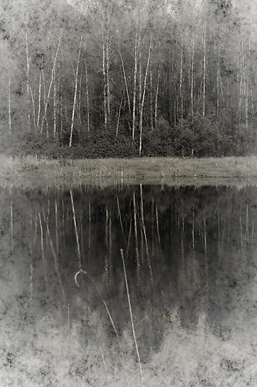 Dreams  by Annie Lemay  Photography