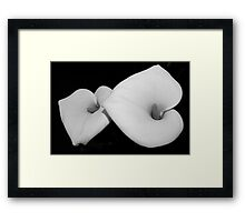 calla lily pair Framed Print