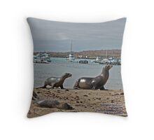 Galapagos Sea Lions (Galapagos Calendar #5) Throw Pillow