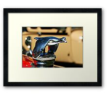 Flying bird hood ornament Framed Print