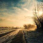 Winter Wonderland by JurrPhotography