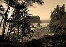awesome ruby beach, wa, usa by dedmanshootn