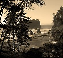 awesome ruby beach, wa, usa by dedmanshootn