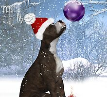 """That's Mine Too"" -  Staffordshire Bull Terrier Winter by Moonlake"