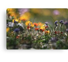 Helios Cliff Flowers -Vintage Russian Lens on Canon Eos Canvas Print