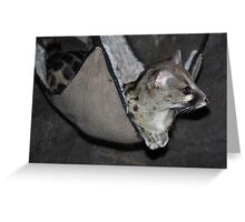 Cool Genet Greeting Card