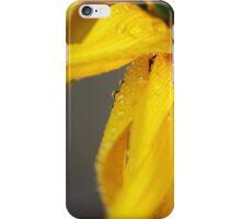Sunflower in Rain iPhone Case/Skin