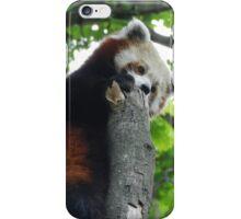 Red Panda Print 14 iPhone Case/Skin