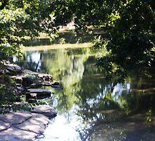 The Creek in August by Pauline Evans