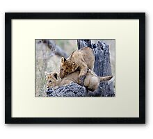 Learning The Takedown Framed Print