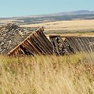 Fixer-Upper With Territorial View - Frenchglen, Harney County, OR by Rebel Kreklow