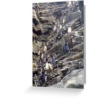 Rock Hoppers Hopping Greeting Card