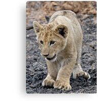 Adorable and Happy - That's Me ! Canvas Print