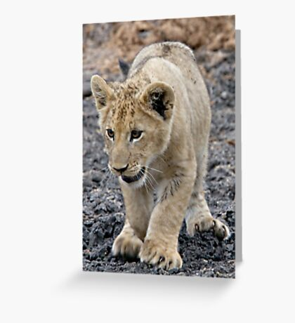 Adorable and Happy - That's Me ! Greeting Card