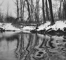 Chillisquaque Creek Reflections by Gene Walls