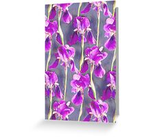 Simple Iris Pattern in Warm Magenta Greeting Card