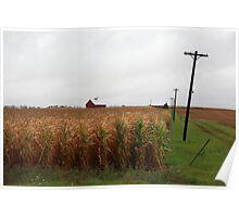 American Cornfield and Farmhouse Poster
