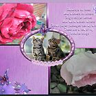 Raindrops On Roses-Collage by judygal