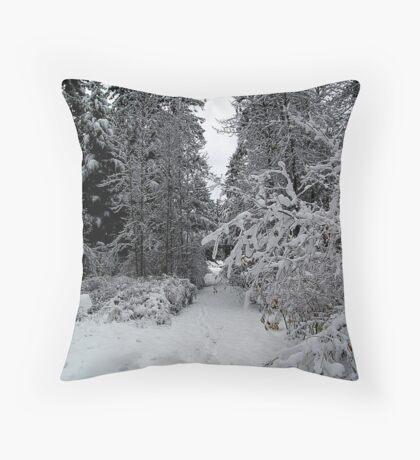 A Winter Trail Throw Pillow