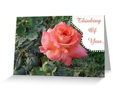 Beautiful Rose Thinking of You Card Greeting Card