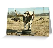 Meanwhile, back at the Ranch . . . Greeting Card