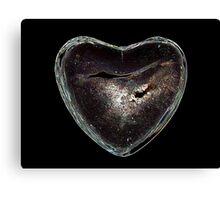 Heart One Canvas Print