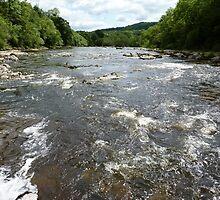 River Wharfe (View Downstream From Aysgarth Falls) by Graham Geldard