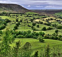 """Distant Views Over North Yorkshire Hills"" by Bradley Shawn  Rabon"